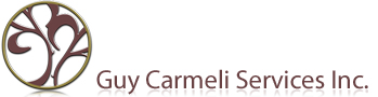 Guy Carmeli Services Inc.